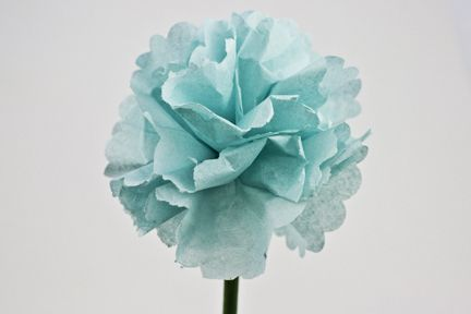Tissue Paper Carnations  -- HOW TO    http://www.gluedots.com/crafts/crafts/tissue-paper-carnation.html