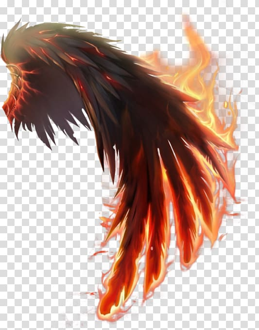 Flaming Wing Illustration Wings Of Fire Computer Icons Wings Transparent Background Png Clipart Wings Of Fire Wings Wallpaper Wings Drawing