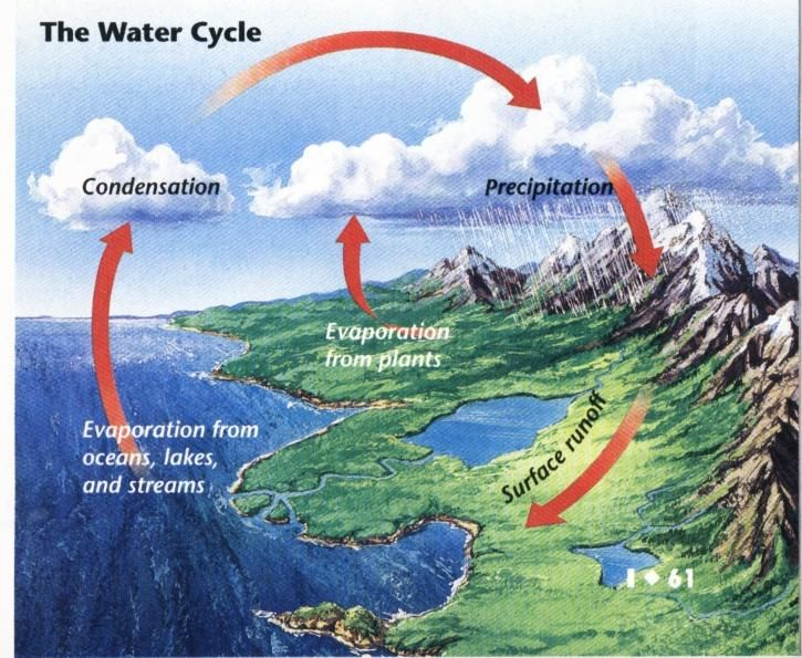 Check out this kahoot called water cycle unit review on check out this kahoot called water cycle unit review on getkahoot ccuart Image collections