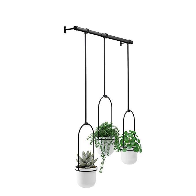 Amazon Com Umbra Triflora Hanging Planter For Window 400 x 300