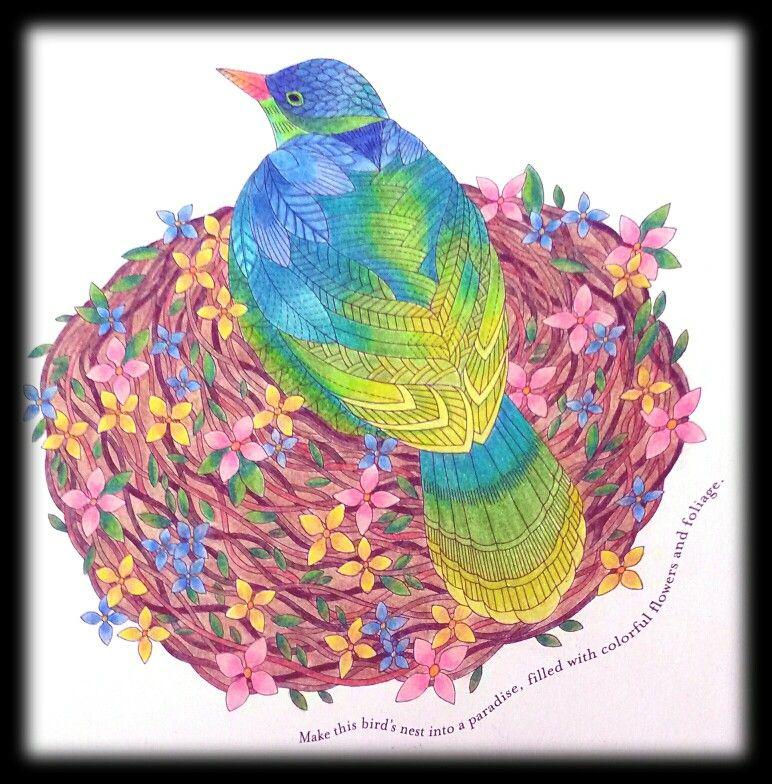 Tropical World...Millie Marotta. Prismacolor Premier & Derwent Colorsoft pencils