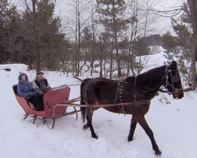Sleigh Ride Winter Wonderland Pinterest Winter Fun Winter And