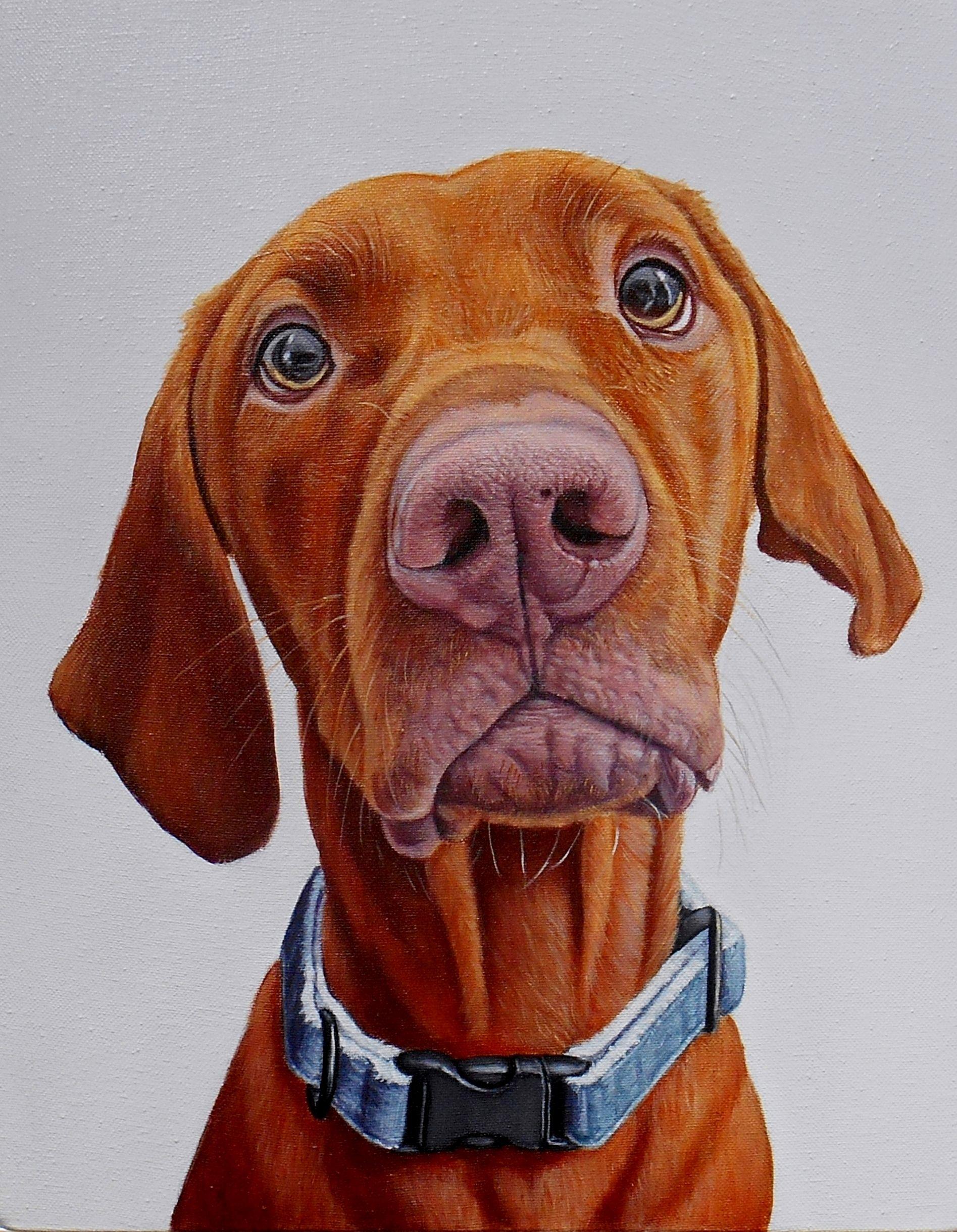 Screenshot Dog Portraits Dog Art Canine Art