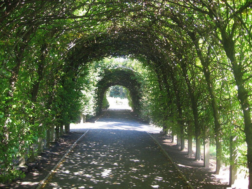 arch way Garden Archway by Katgurl97 ARCH WAYS Pinterest