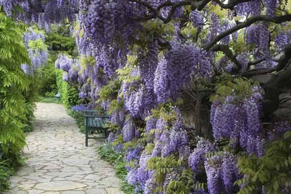 Design#5001626: Romantische gärten | gartenweg richtig anlegen | lieblingsplÄtze .... Ein Romantischer Garten