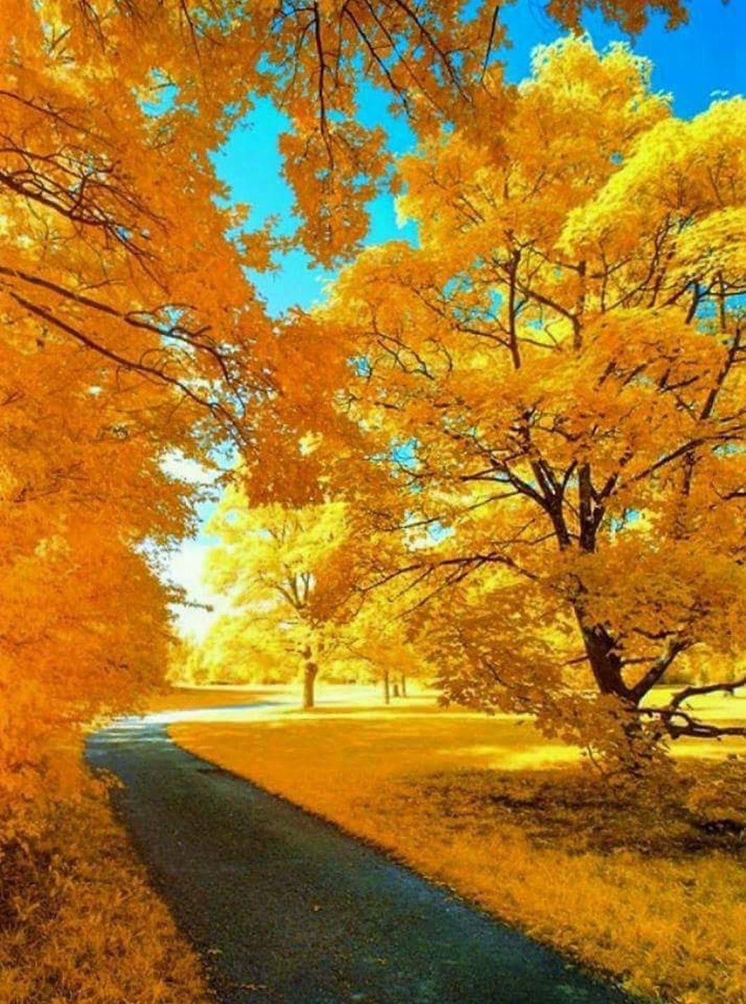 #Beautiful #Nature - kim kim - Google+ | Natureza ...