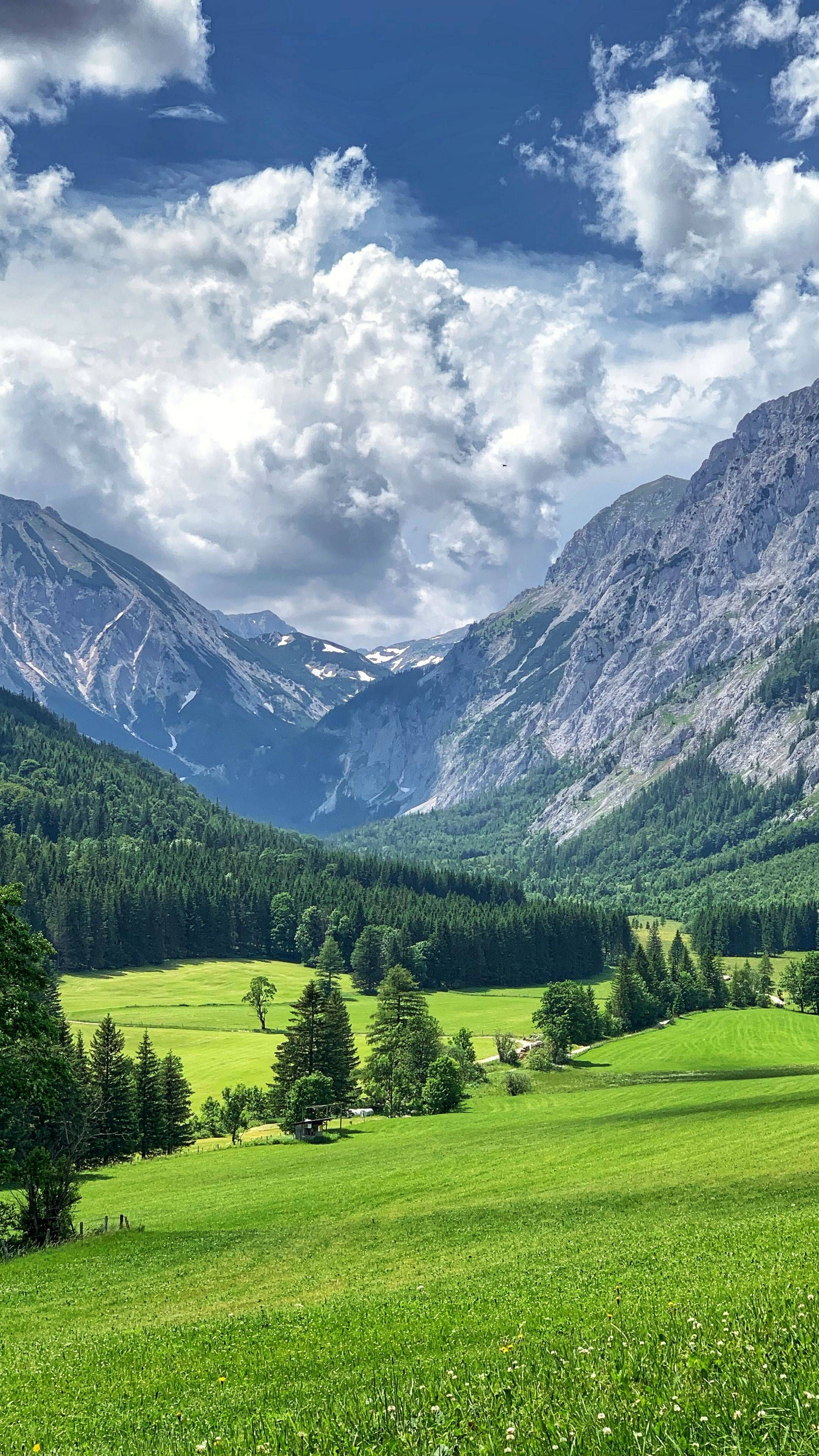 The latest iPhone11, iPhone11 Pro, iPhone 11 Pro Max mobile phone HD wallpapers free download, mountains, valley, trees, grass, landscape, green