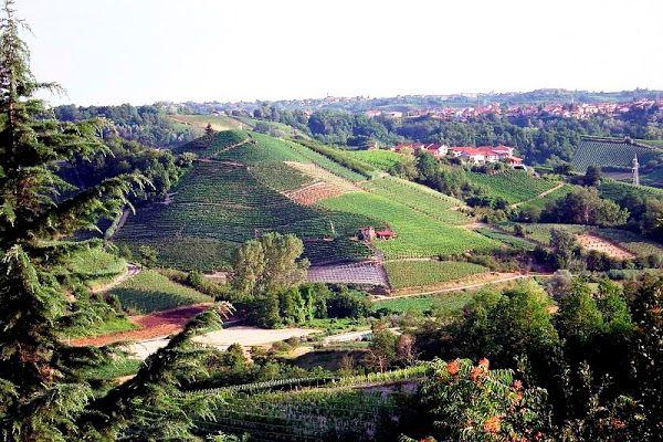 Tra le province di Cuneo, Torino e Asti, sorge il comune di Montà, parte della zona denominata Roero.   Bordone su Excantia: http://www.excantia.com/produttori/bordone