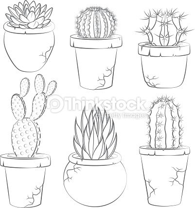 Step On How To Draw An Iris Flower Clip Art Google Search Cactus Drawing Flower Drawing Cactus Art