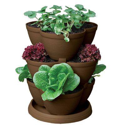 Akro Mils Lawn U0026 Garden Novelty Pot Planter Color: Chocolate