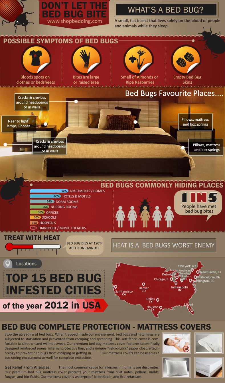 mattress infographics mattress inspiration sleep pinterest