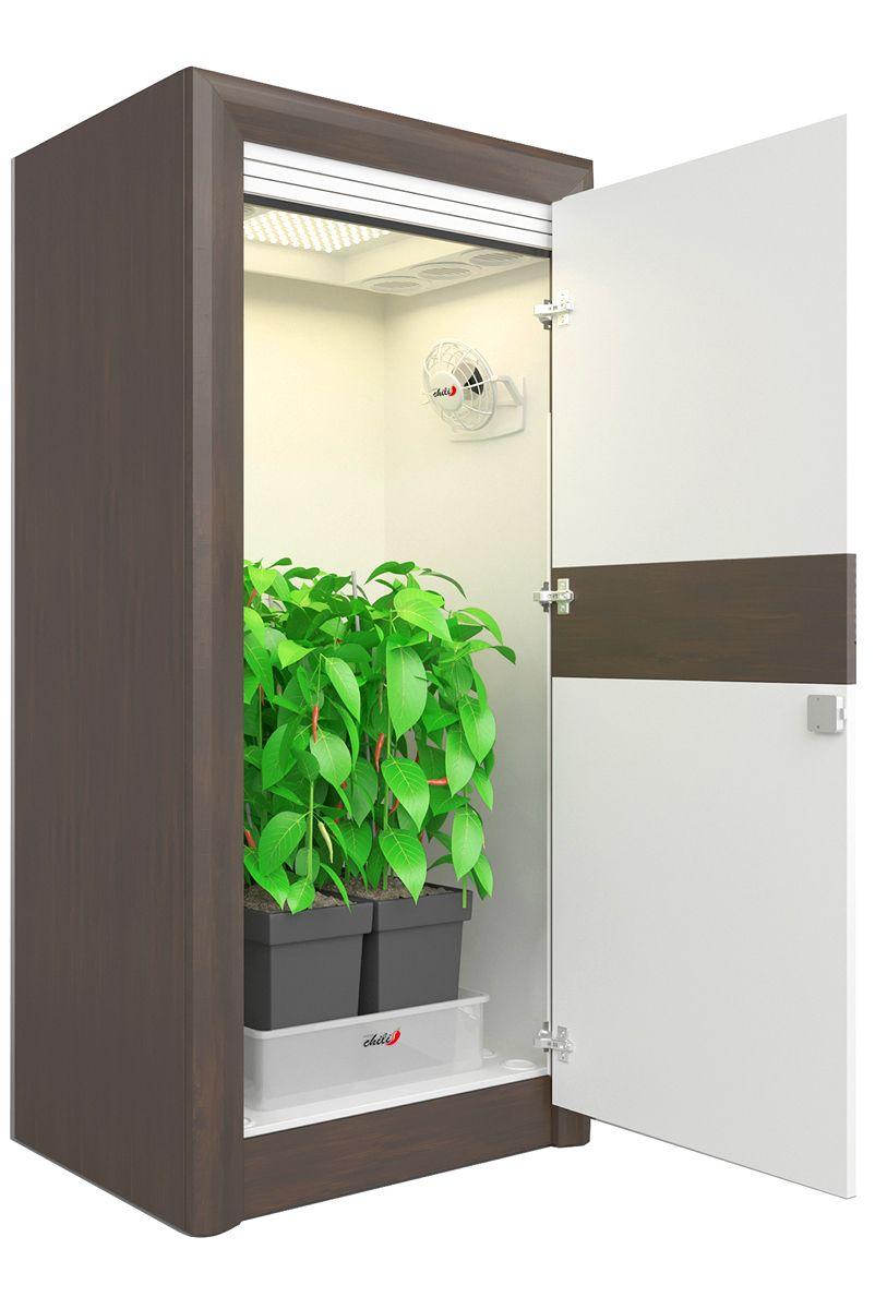 Led Growbox Komplettset Premium Growschrank Urban Chili Zimmerpflanzen Ideen Chili Pflanzen Drinnen