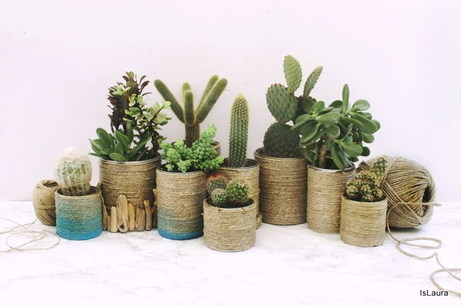 1come realizzare dei vasi per le piante grasse riciclando - Vasi con piante grasse ...