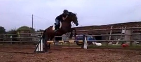 The worst possible quality (wait till I get photoshop on it!), but she just popped it; so proud :) Face full of mane ;)
