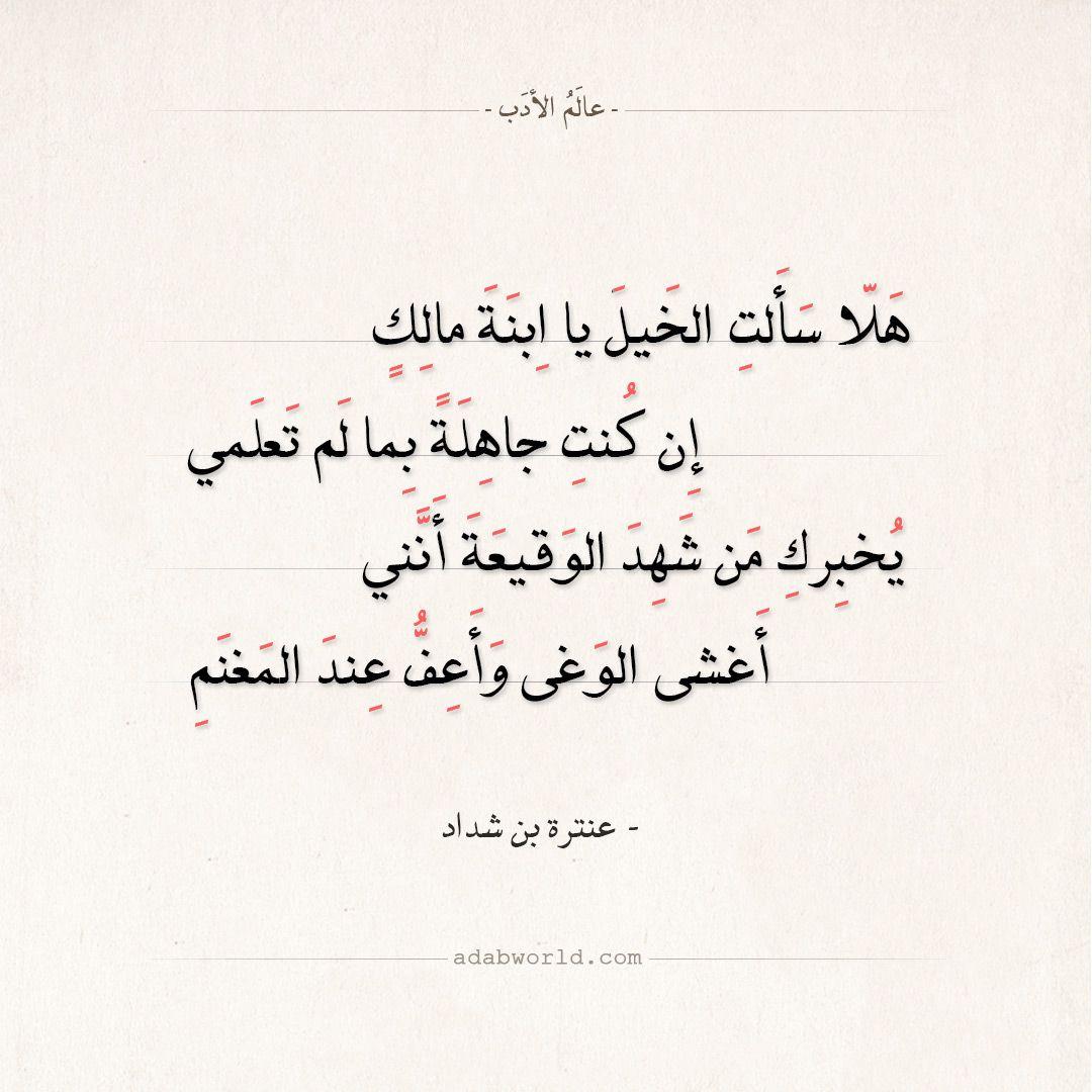 شعر عنترة بن شداد هلا سألت الخيل يا ابنة مالك عالم الأدب Poetic Words Quotes Words