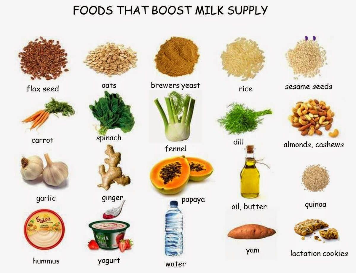 Foods That Boost Milk Supply Wwwperfectdaysczblogspotcz -7030