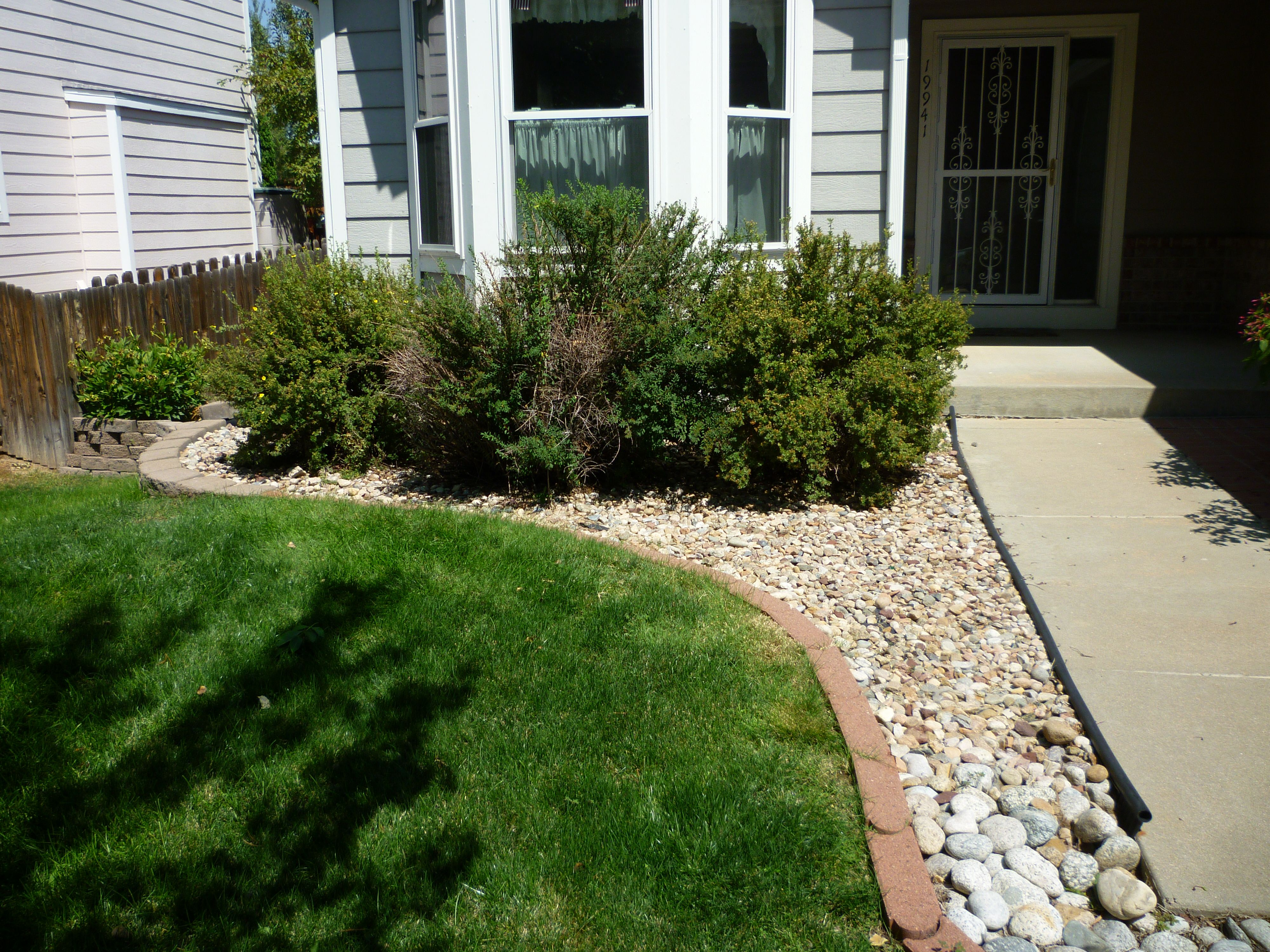 Boxwood Shrubs In Front Of House He Dug Up The Old Bushes
