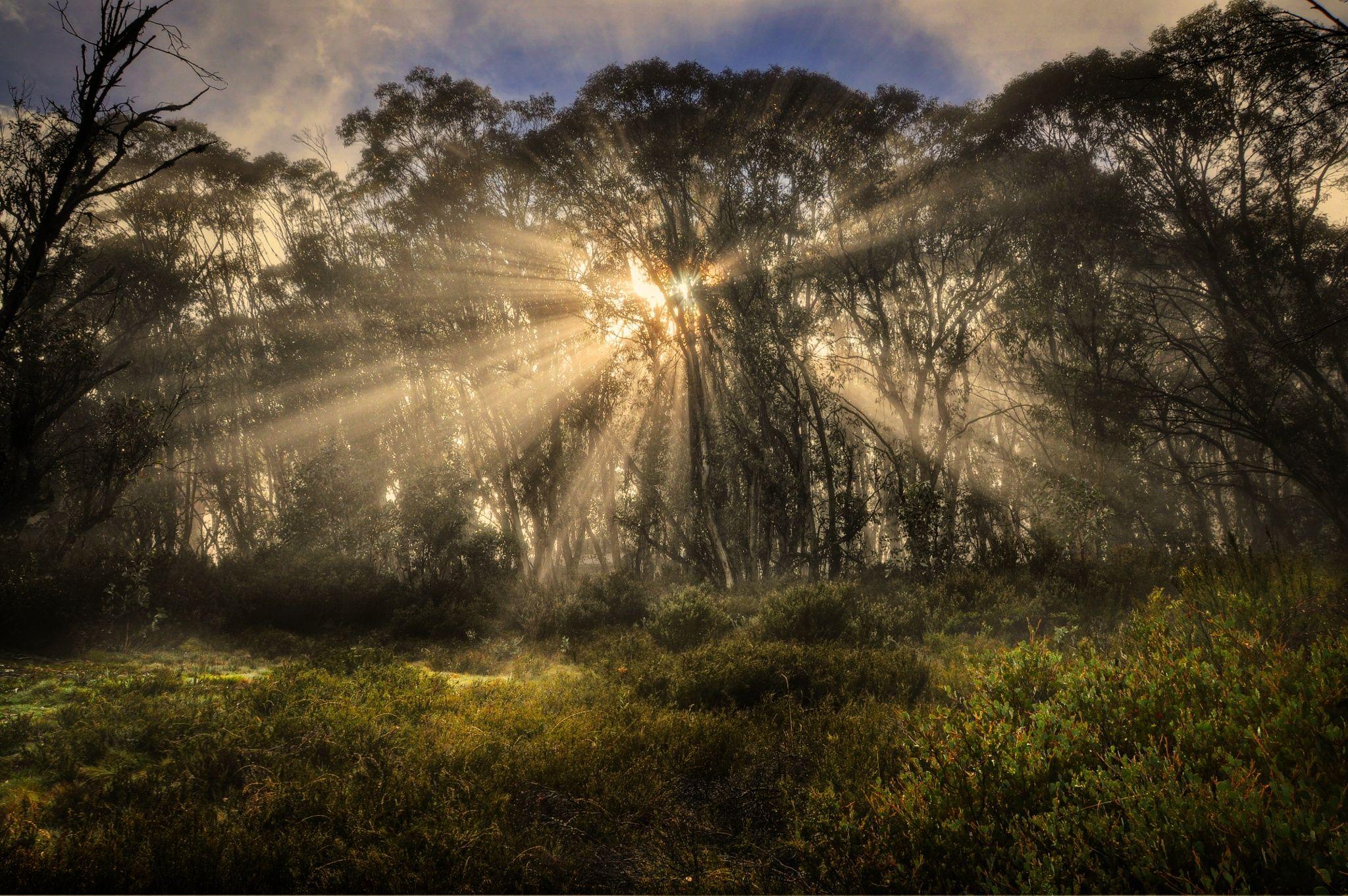 Fotograf Sun's Rays von Peter Hammer auf 500px