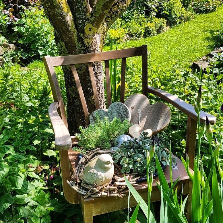 Gefallt 432 Mal 19 Kommentare Mein Weg Zum Gartengluck Landhaus Garten Auf Instagram Der Stuhl Ist Ein Spontanes Geschenk Meiner Lieben Nachba Plants