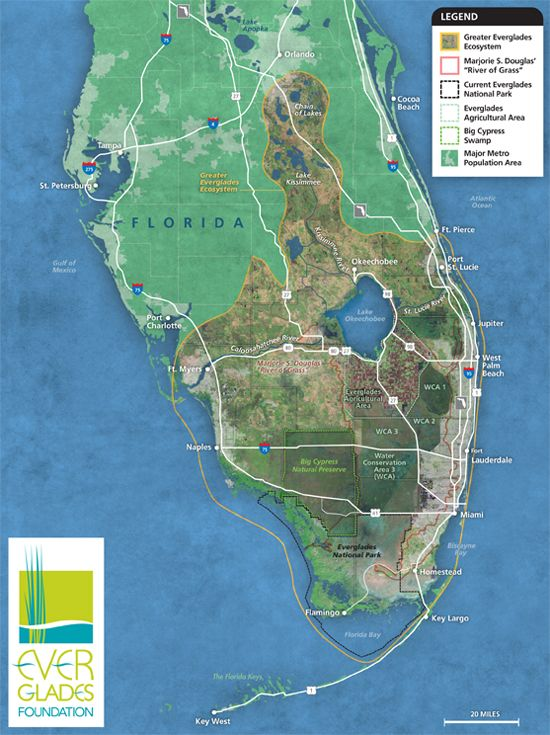 Florida Everglades Map 8 5x11 Tree Hugger