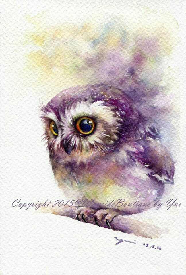 Owl Watercolour I Love The Color Bleeding Away Behind Him And