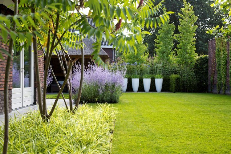 Pin by laura lip on tuin pinterest garden garden design and plants