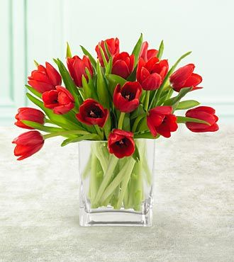 Red Tulips With Free Vase Send Flowers Gifts To Philippines Argentina Brazil Mexico Belgium Norway Tulip Centerpiece Tulips In Vase Red Tulips