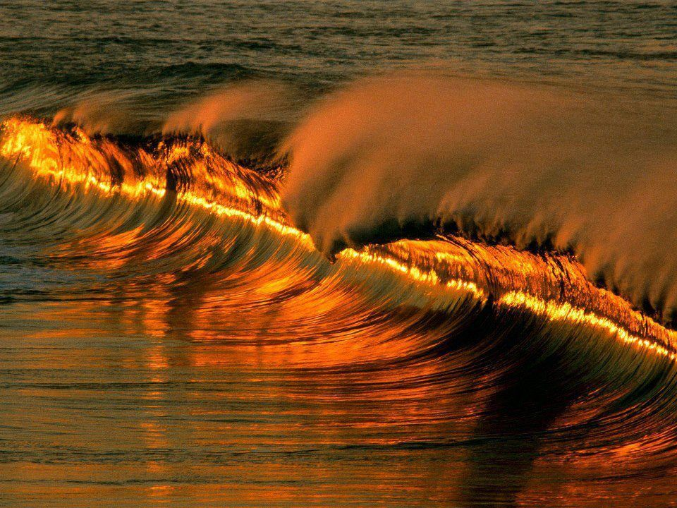 Golden wave at sunset in Puerto Escondido. Mexico