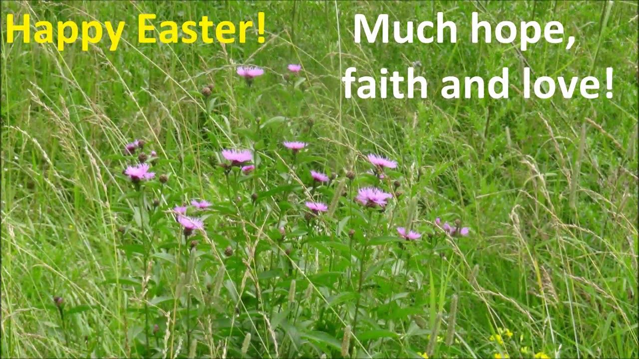 Happy Easter Day 2018 Easter Greetings Happy Birthday Wishes