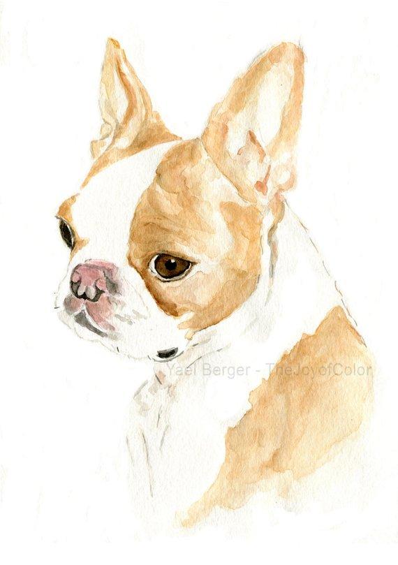 300db8ab8c6b Custom dog portrait/ pet portrait/ custom pet portrait/ custom pet art/ dog  portrait/ cat portrait/