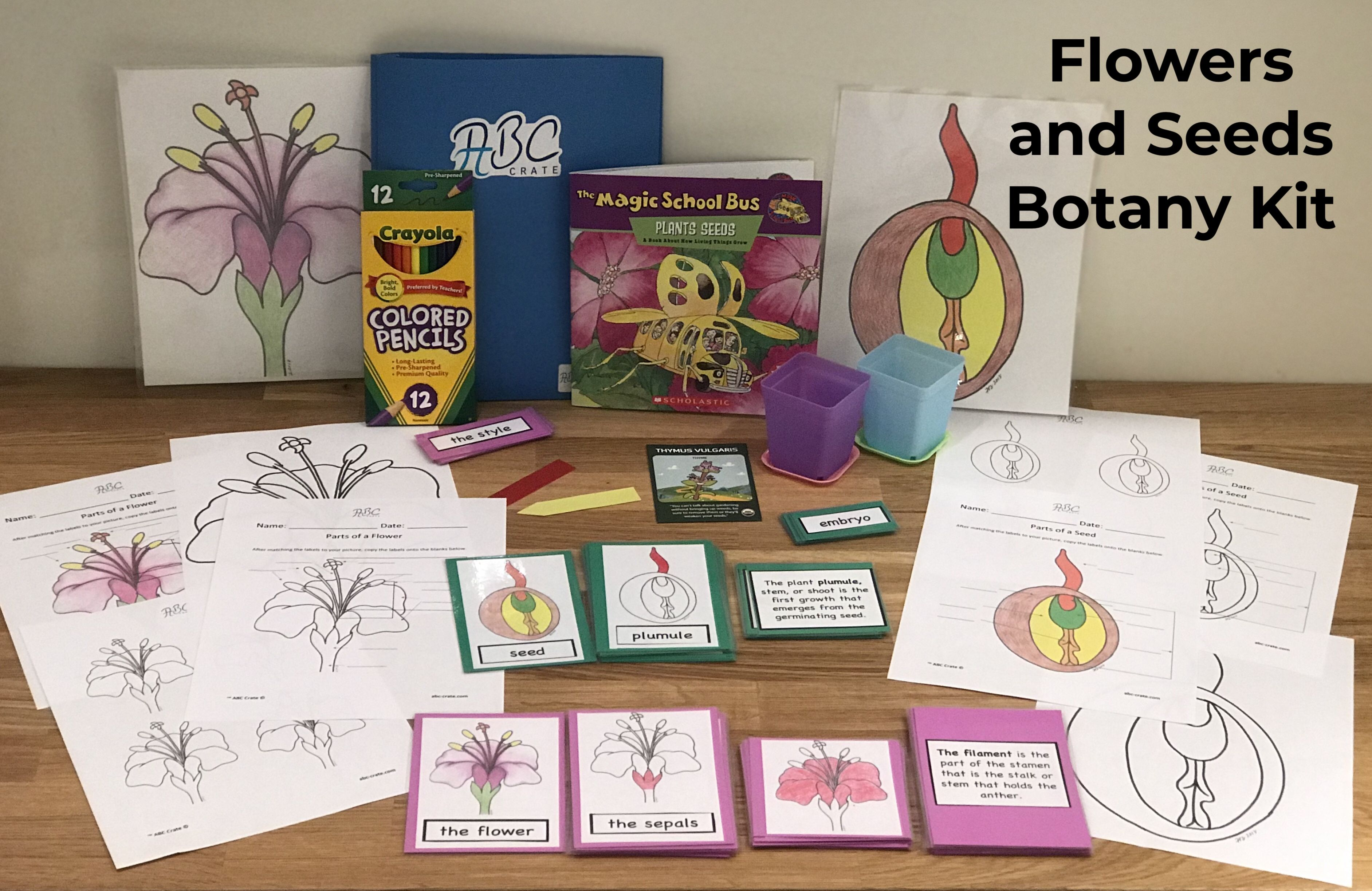 Includes An Illustrated Lesson Plan Hands On Materials