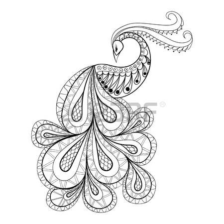 Stylized peacock feather hand drawn peacock for for Adult coloring pages peacock
