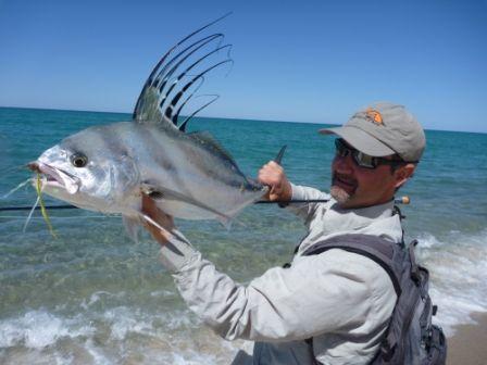 Baja california beaches rooster fish rainswept for Baja california fishing