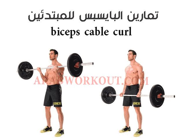 تمرين البايسبس بالبار تمارين البايسبس في المنزل تمارين البايسبس والترايسبس تمارين البايسبس والترايسبس في المنزل تمارين البايسبس بالدم Cable Curl Biceps Workout
