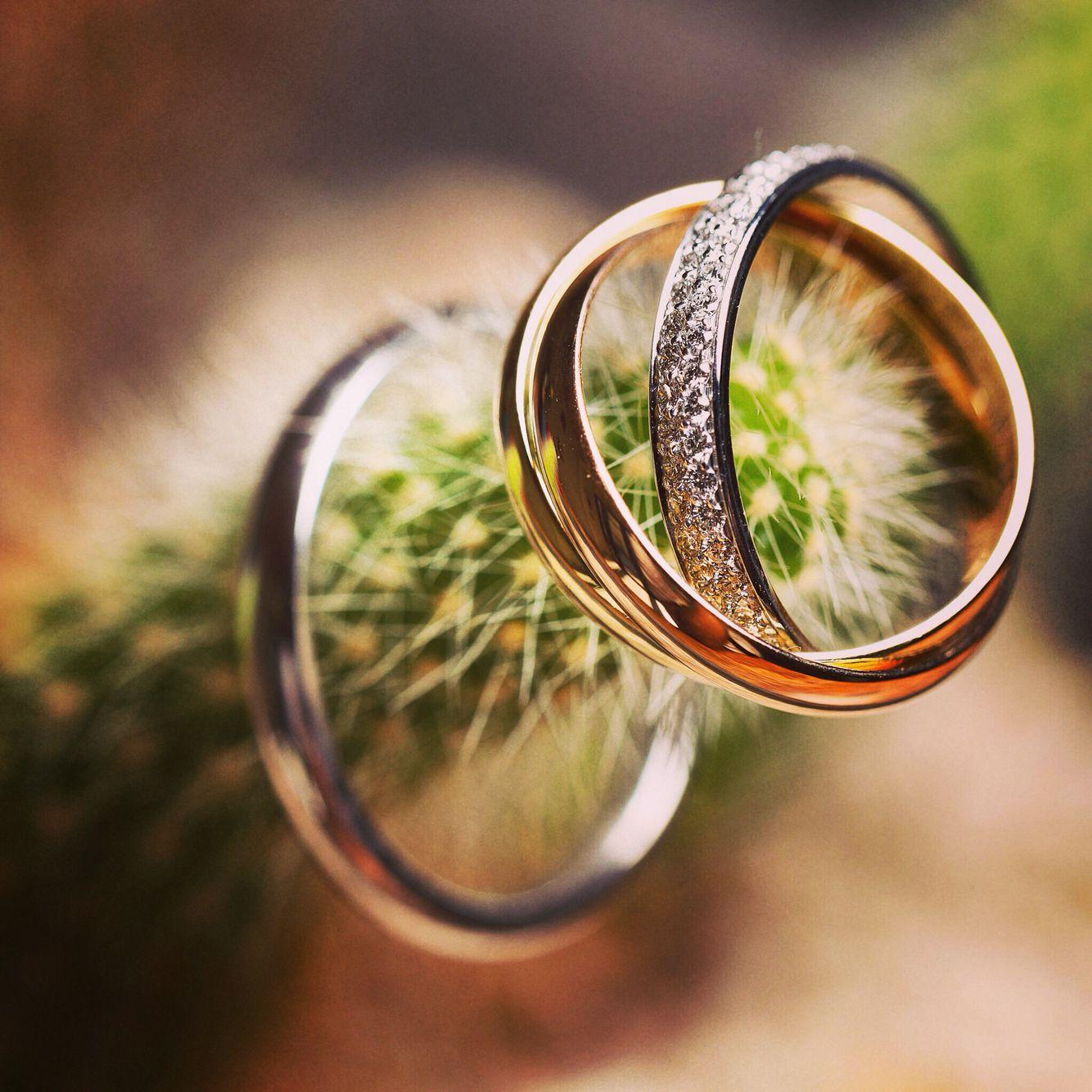 Close up rings Destination wedding in Los Cabos Mexico