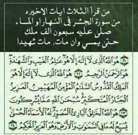 Desertrose أواخر سورة الحشر Arabic Calligraphy Calligraphy