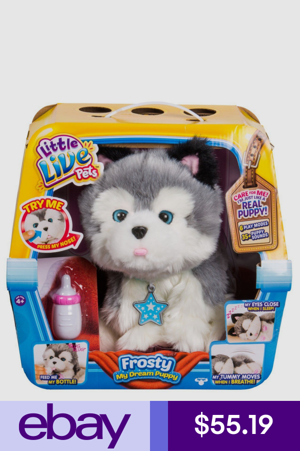Little Live Pets Other Interactive Toys Toys Hobbies Ebay Zabawki Brystol