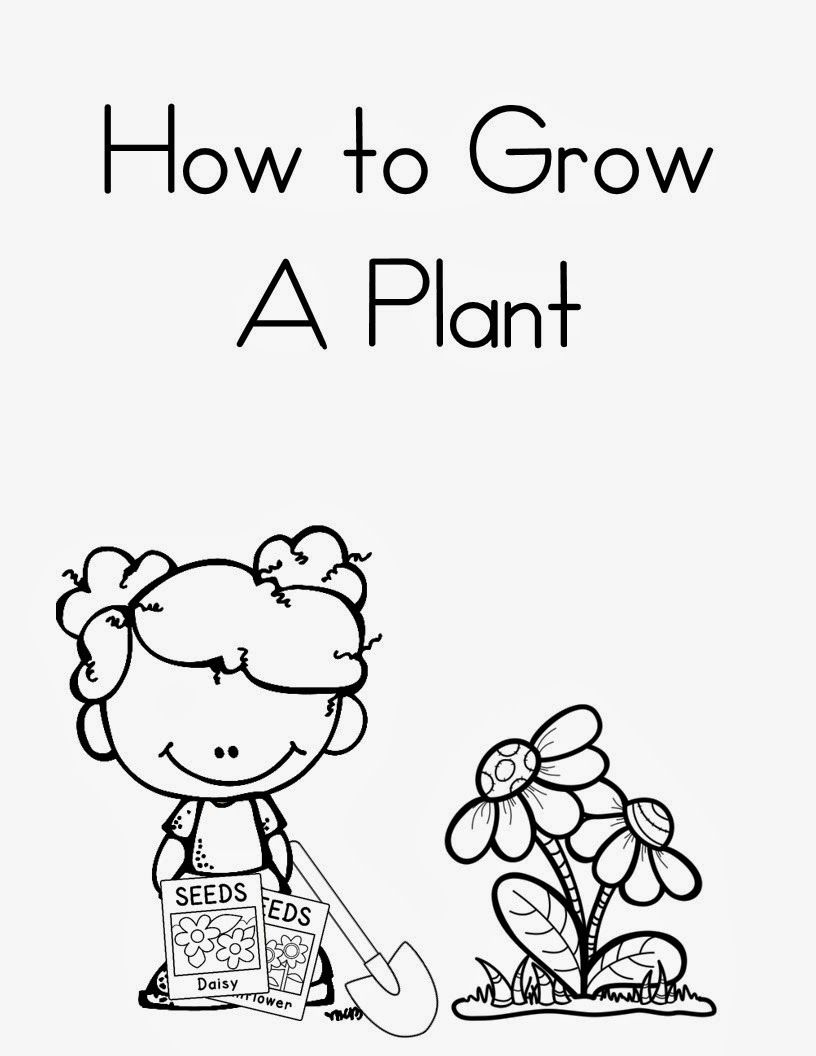 How To Grow A Plant Book Plants Kindergarten Plant Book Plant Life Cycle [ 1056 x 816 Pixel ]