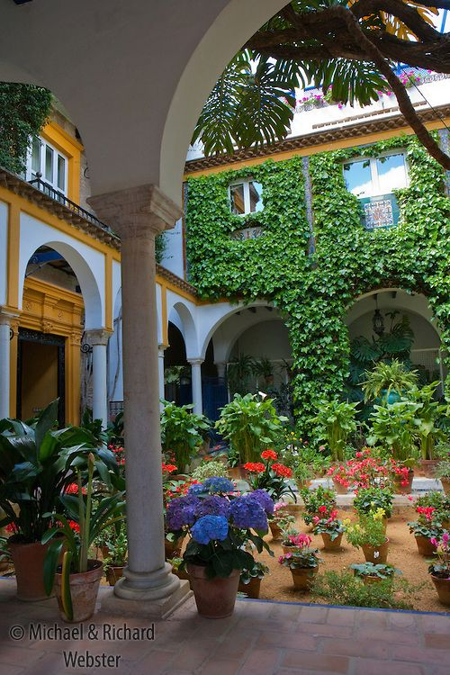 Charming Private Spanish Patio Garden In Seville.