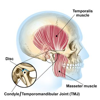 Could You Be Suffering From Tmj Finding Treatments In Augusta Ga Georgia Clinic Of Chiropract Temporomandibular Joint Disorders Temporomandibular Joint Tmj