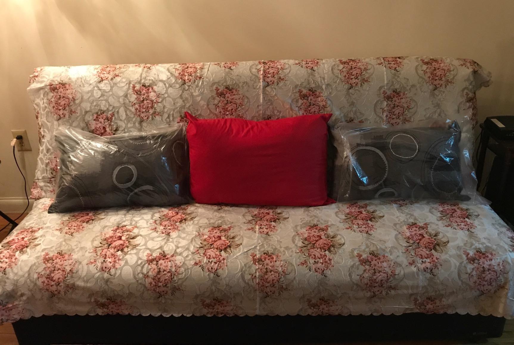 Amazon Chiara Rose Anti slip Armless 1 Piece Sofa Shield