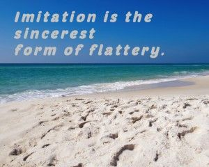Imitation is the Sincerest Form of Flattery #weu #self-confidence ...