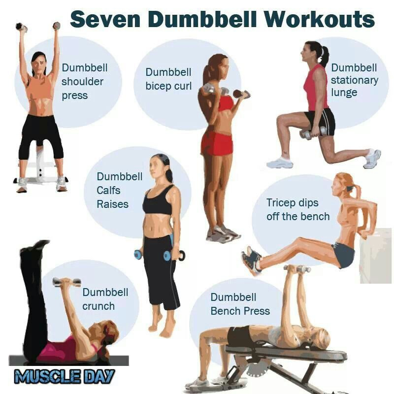Dumbell Military Press The Dumbell Military Press Is A: Dumbell Workout For The Ladies