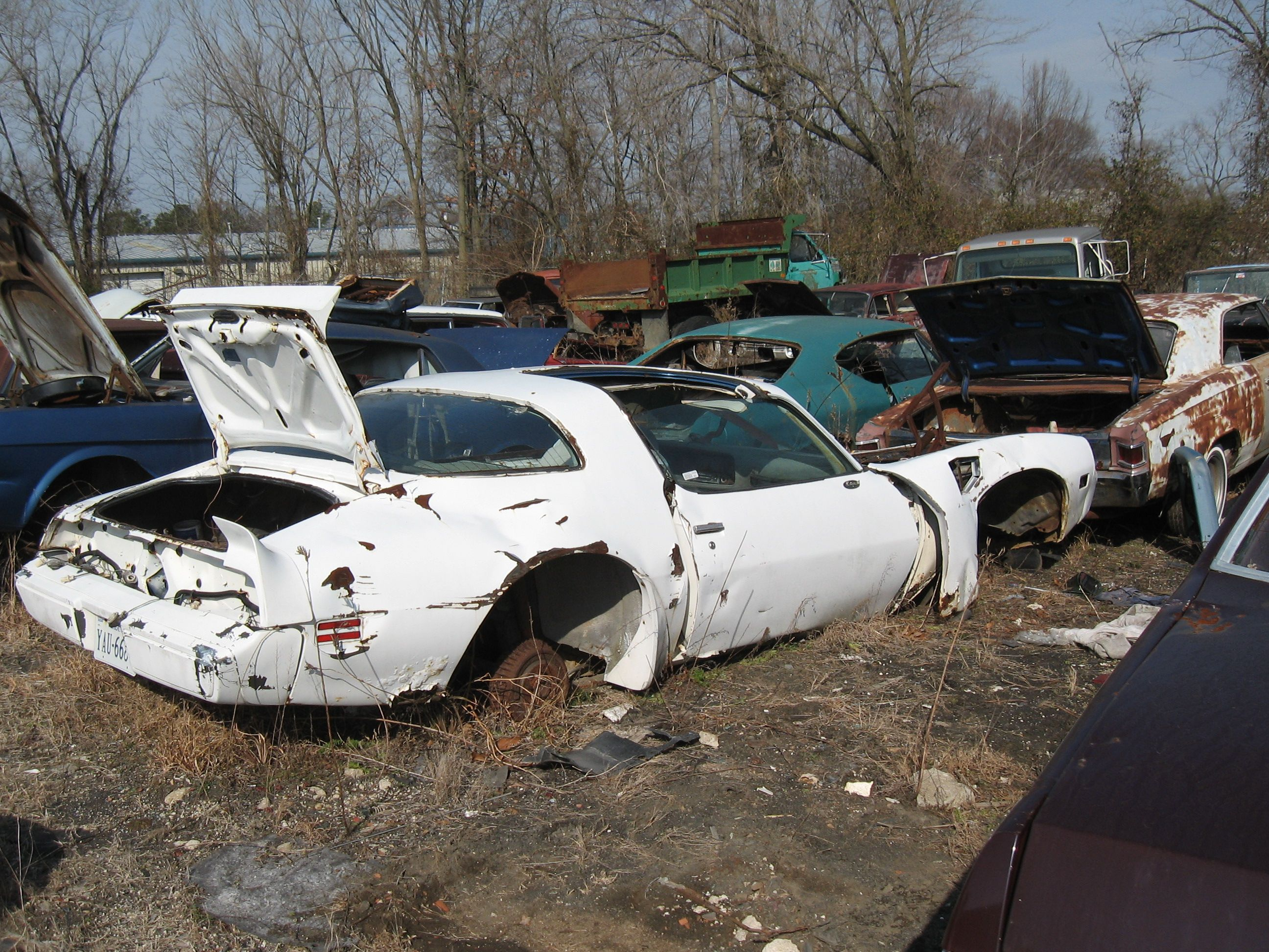 1968 Ford Mustang junkyard cars picture | SuperMotors.net | Auto ...