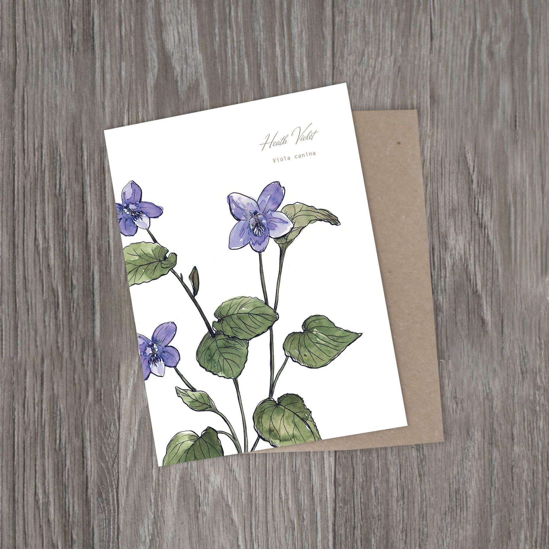 Heath Violet Purple Wild Flower Botanical Watercolour Print Blank Notecard Scottish Plant Illustrat Plant Illustration Botanical Watercolor Watercolor Print