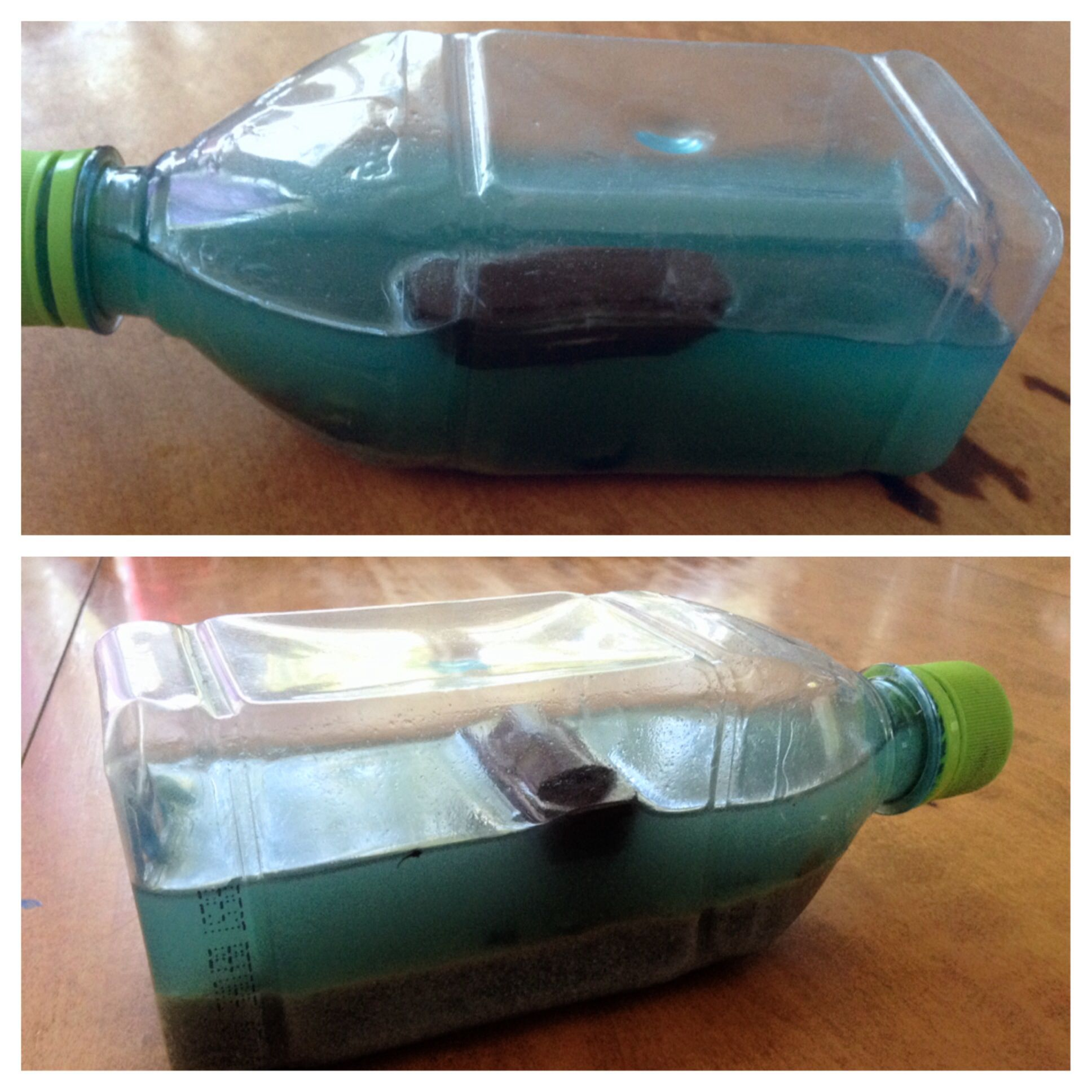 Noah boat in a bottle ark flood bible crafts pinterest for The ark of craft