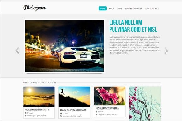Photogram is a free WordPress Theme (GPL) by ColorLabs that comes ...
