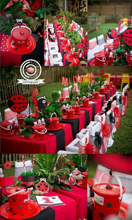 Ladybug party ideas for kids 4akid fan makes a stunning for Decoration theme jardin