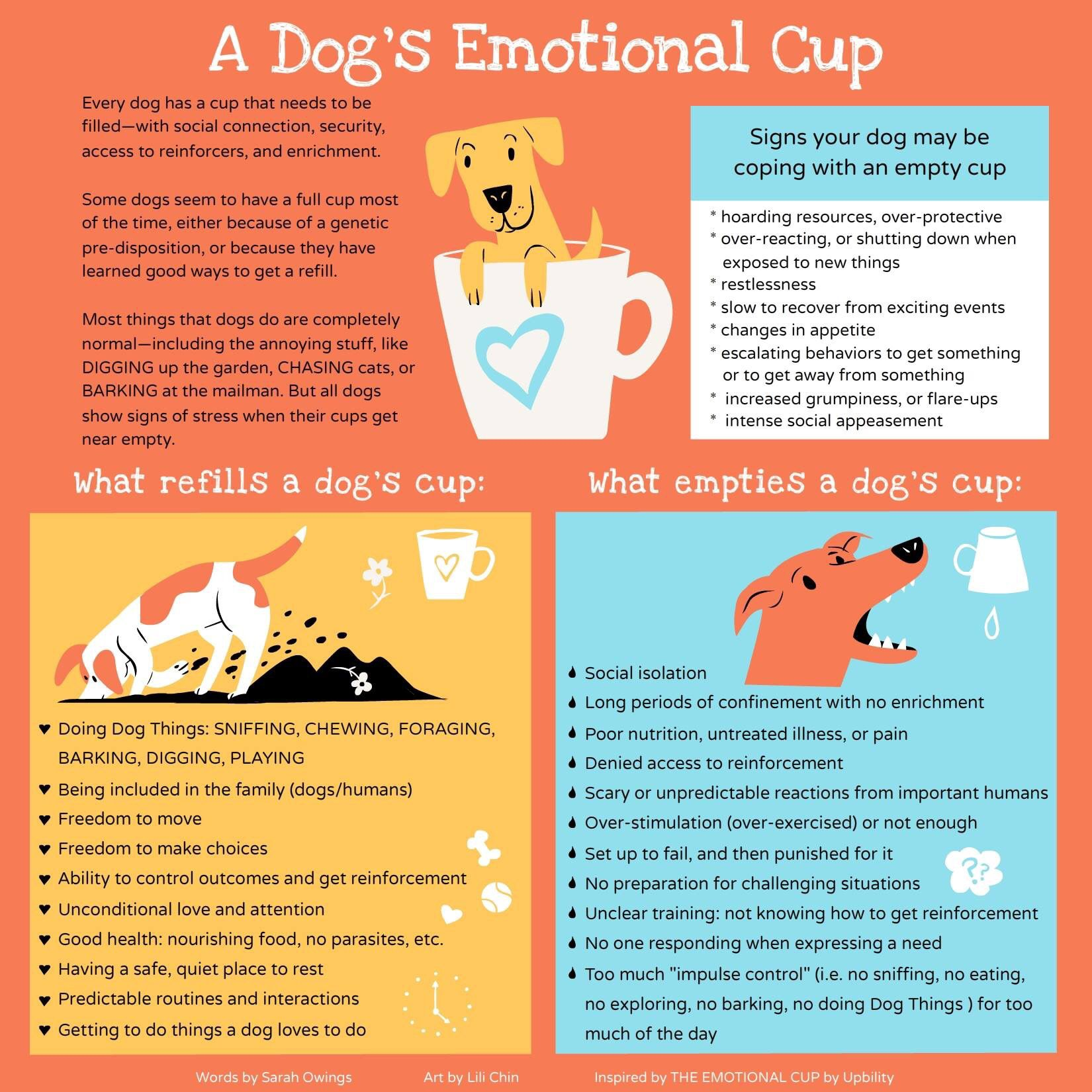 Pin By Carolyn Moore On Dog Stuff Emotions Dog Body Language