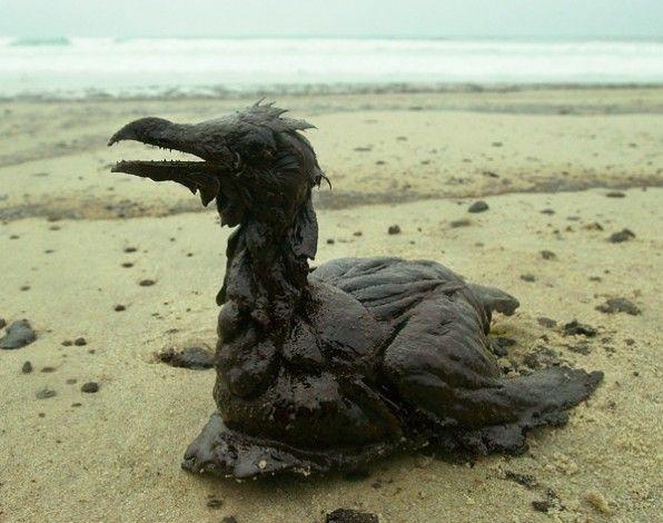 10 años del desastre del Prestige http://www.muyinteresante.es/fotos-10-anos-tragedia-prestige #medioambiente #science #ecología